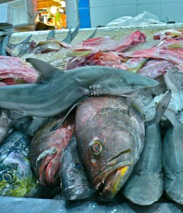 Fish at the food market in Mexico DF