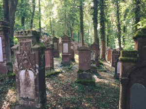 Rexingen's Jewish Cemetery. Photo courtesy of Hannah Yerington.